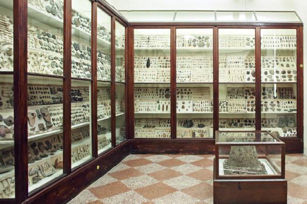 MuseoArcheologico_bologna musei_magazzino26 blog