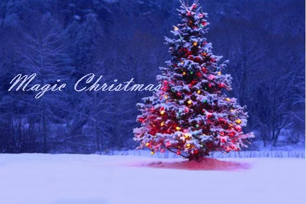 magic christmas_Elena Cocchi_Magazzino26 blog